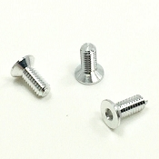 Aluminum Timing Ring Screws Non-Magnetic (3) (Silver)