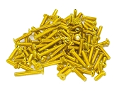 Team Associated B6/B6D 24K Gold Screw Kit (90)
